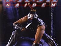 Review Ninja Gaiden Xbox