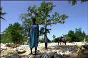 Residents of the village of Cayes Didier, near Mapou, Haiti, walk by a mapou tree. The waterlogged village of Mapou, surrounded by denuded hills, has only a few of the namesake trees left. The few remaining trees saved villagers who clung to them as crushing torrents of water ripped through the town last week.