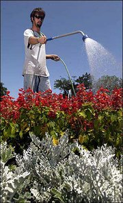 Adam Peterson, a landscaper at Kansas University, waters the flowers surrounding the Chi Omega Fountain. Clear skies and temperatures reaching into the mid-80s are forecast for today, with a chance of storms by this evening.