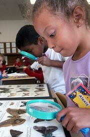 Paula Aiken, with the Douglas County Extension Office, leads second-graders Alexa Smith and TreVaun Ross through the recitation of the 4-H Pledge during the start of an after-school class at New York School. Aiken worked with second-graders from Schwegler and New York schools Wednesday in exploring the world of insects.