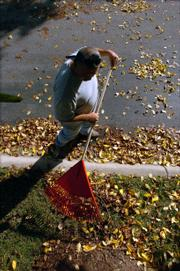 Bary Massey, a Willowridge Landscape Inc. employee, rakes leaves at Douglas County Bank, Ninth and Kentucky streets.