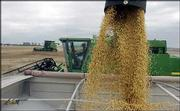 Bumper crops and high market prices for livestock combined to produce a record farm income for the second year in a row. In this file photograph, workers harvest soybeans on a field northeast of Lawrence.