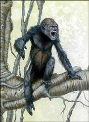 This is an undated artist's reconstruction of Pierolapithecus catalaunicus, an ancient ape that may have been the last common ancestor of modern great apes.