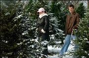 Curtis Walter and his wife Audra, of Eudora, spent part of Tuesday selecting their Christmas tree at Strawberry Hill Christmas Tree Farm west of Lawrence. Farm owners Eric and Lyn Walther planted their first tree in 1977 and are celebrating their 20th year of selling their product.