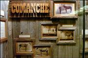 Officials at Kansas University's Natural History Museum are preparing a new exhibit space for Comanche, the horse that survived Custer's Last Stand. The new space also will have new photos and information about Comanche's life story, as well as a video presentation on the horse.