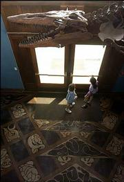 The skeleton of a mosasaur hangs from the ceiling of the Natural History Museum at Kansas University. The marble floor inlay in the museum's entrance depicts the evolutionary process.