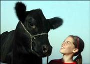 Rosie, a 1000-pound Angus calf and her owner, MacKenzie Flory, 13, bask in the late afternoon light on the Flory farm in rural Baldwin. Rosie whose real name is EXG Primrose PO54 R3, was recently named a grand champion in the Western National Angus futurity in Reno, Nevada.
