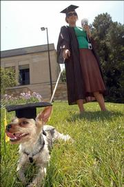 Rebecca Todd, of Lawrence, and her Yorkshire terrier Clarence - sporting a mortar board cap of his own - wait to walk down the hill Sunday for commencement.