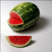 The watermelon is one of two broad categories of melon, the other being muskmelon. America's most popular is the large, elongated-oval shape with a variegated or striped, two-tone green or gray-green rind.