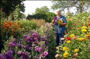 Kathy Hagen, owner of Prairie Flowers, grows flowers through the summer but adds a twist by drying blooms to sell in wreaths, swags and other arrangements during the fall. Now is the time for gardeners to pluck blossoms  - at the height of freshness - that will make the most attractive dried specimens.