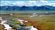 A section of land inside the Arctic National Wildlife Refuge in Alaska, proposed to be used for oil exploration by the Bush administration, is shown in this undated file photo. Conspicuous by its absence in the energy bill that President Bush will sign today is his top energy priority - the opening of this Alaska wildlife refuge to oil drilling.  But the fight over the future of the Arctic refuge will flare anew in Congress in September.
