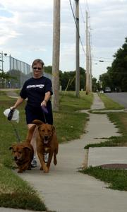 Lynette Petty, Lawrence, walks her dogs on 22nd Street. New subdivision regulations are attempting to put sidewalks on both sides of the street along with more crosswalks.
