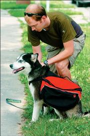 O'Neal gears up his dog with a pack to carry her food and water.