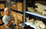 Norman Slade, a mammal curator at the Kansas University Natural History Museum, will soon have the task of moving the mammalogy division and its extensive collection to the former Printing Services building on west campus. Slade is surrounded by boxes and shelves of mammal bones in a storage room on the seventh floor of Dyche Hall.