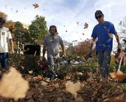Kansas University Facilities and Operations workers, from left, Derek Peterson, Jim Crumpton and Bernard Herman, pile up leaves with blowers in front of Budig Hall on KU's campus. The crew made its way around campus last fall, hauling off leaves that began to fall in recent days.