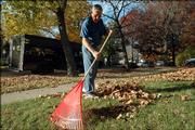 Joe Patterson, Lawrence, rakes leaves in front of his mother-in-law's rental house at 612 W. Seventh St. Old West Lawrence is a good example of a neighborhood with destination sidewalks, a key ingredient in New Urbanism.