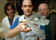 Kansas University graduate student Robert Elder holds a model of a longisquama, a feathered reptile that may predate dinosaurs. David Burnham, left, and Larry Martin, curator of vertebrate paleontology, look on. The model is part of a future display about the birth of flight.