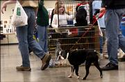 Visitors walk past an adoption booth during the Animal Fair of Douglas County. Sunday's event at the Douglas County 4-H Fairgrounds included pet-product vendors and information about pet care and adoption. The fair is a fundraiser for the Lawrence Humane Society.