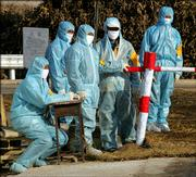 Workers wait at a disinfection checkpoint Wednesday at the entrance to Qitaizi Village in China's northeast Liaoning province. The village was the site of one of four recent outbreaks of bird flu in Liaoning province. The World Health Organization warned China on Thursday that it should be preparing for further bird flu outbreaks.