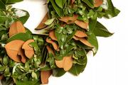 Bolduan created this wreath using magnolia leaves, which fade to a nice honey brown, and holly accents.