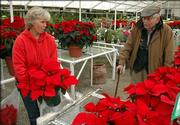 Donna Gardner, of Sunrise Garden Center, helps customer Jim Owens find some poinsettias for friends.