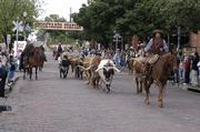 Fort Worth's Stockyards area offers a variety of Western activities, in addition to bars, shops and restaurants. Those include cattle drives at 11:30 a.m. and 4:30 p.m. daily,  a historical museum and the Texas Cowboy Hall of Fame.