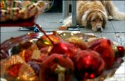 Golden retriever Max waits Friday for owner Mette Tangaa-Andersen to finish shopping outside of Just For Fun in San Francisco.