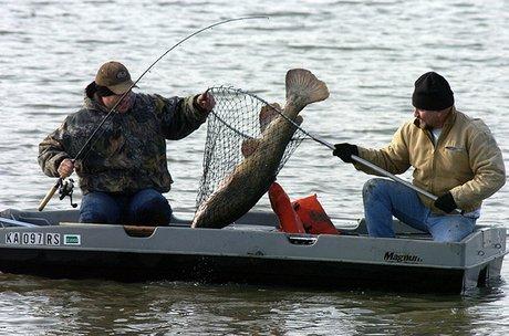Fish no small matter at lake for Douglas lake fishing