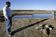 Donnie Young looks over a wastewater lagoon on the dairy farm he is part-owner of near Ulysses in this 2006 photo. Faced with a declining water table in the Ogallala Aquifer, water is reused in six different processes at the dairy before finally being used to irrigate crops.