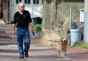 Don Mayberger and his dog Nokona go for an afternoon walk on Tuesday in the alley of the 700 block of Tennessee Street.