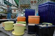 Dozens of brightly colored pots, bird baths and saucers surround the entrance to the greenhouse at Hamill's Country Gardens, 1236 N. 100 Road. Hamill, who creates colorful container gardens, says potted environments should reflect the creator's personality.