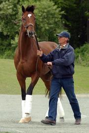 Trainer Michael Matz walks Kentucky Derby winner Barbaro Monday after returning to their home stables at the Fair Hill Training Center in Fair Hill, Md.