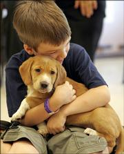 "Will Farkas embraces a puppy during the first morning of a camp for children whose lives have been touched by cancer, sponsored by the Geauga Humane Society's Rescue Village and The Gathering Place in South Russell. Ohio. Families shouldn't rush out to get a dog, or simply pick the cutest one of the litter.   A new dog won't be ""new"" for long; it must fit into the family and the family's lifestyle for the long haul."