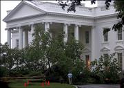 Heavy storms caused flooding and downed trees and power lines Monday in the Washington, D.C., area, including this large elm tree that fell at President Bush's doorstep in front of the White House. Heavy winds and rains knocked the large tree down overnight.