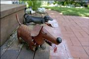 Two metal dogs are at home on the back steps at Carla Rasch's Old West Lawrence home. Although Rasch gardens in a small space, she takes advantage of every square inch.