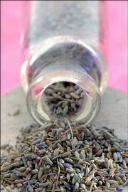 Dried lavender can be used to flavor sugar, as a substitute for rosemary in any recipe and as part of a simple spice rub for meats.