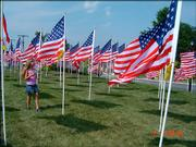 "While visiting Grandma and Grandpa Bergman, Alexis Kriegh, 7, walks through the flag display at the Fields for Freedom in Merriam, KS.  Alexis expressed ""I feel like I'm getting lost in America"""