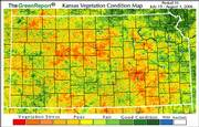 This map from Kansas Applied Remote Sensing shows the impact of heat and drought on crops in Kansas.