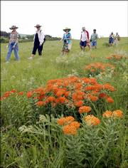 Tourists receive a guided tour of natural prairie grasses before the Symphony in the Flint Hills concert just north of Strong City in the Tallgrass Prairie National Preserve. The Nature Conservancy on Friday announced the donation of a conservation easement in the Flint Hills encompassing 10,000 acres.