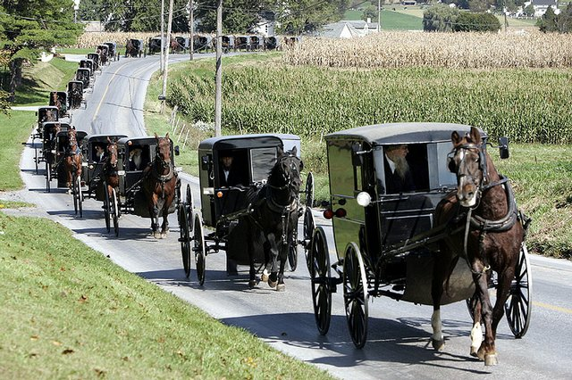Photo A Horse And Buggy Amish Funeral Procession Heads