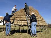 Phil Cross, left, hands Joe McMilliam a branch as Matt Stapleton and Bill Severinghaus work atop a switchgrass hut at Haskell Indian Nations University.  Cross, from the Caddo Nation of Oklahoma, led the construction of the hut Thursday. The project is part of a U.S. Army environmental effort to restore native grasses.