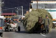 "A man leads a cart loaded with hay in the village of Glod, Romania, 85 miles northwest of the capital, Bucharest. Comedian Sacha Baron Cohen used Glod&squot;s Gypsies as stand-ins for Kazakhs in his movie ""Borat: Cultural Learnings of America for Make Benefit Glorious Nation of Kazakhstan."" Now, offended villagers are threatening to sue the film&squot;s producers for exploitation."