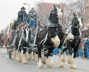 The Lawrence Old-Fashioned Christmas Parade along Massachusetts Street features horse-drawn vehicles exclusively. In this photo from 2003, Remington rears up while pulling Shawn Gordon, left, of Brighton, Mo., and Larry Elarton, Fort Morgan, Colo., on a six-horse hitch wagon.