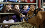 Students from Quail Run School pet a dairy calf at the seventh annual Slice of Agriculture program at the Douglas County 4-H Fairgrounds. During the event, which continues today, about 900 fourth-graders learn the value of agriculture and explore a variety of topics related to producing food.