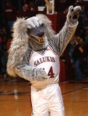 Although they may sound like a made-up animal, Southern Illinois' mascot, the Saluki, is actually a dog with a history that began in the ancient Middle East.