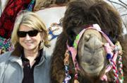 "Martha Stewart poses with a camel Saturday during a concert of folk music and dance in Baikonur, Kazakhstan. Stewart came Friday to the bleak space town of Baikonur to say goodbye to friend Charles Simonyi, a software engineer and developer of Microsoft Word who paid $25 million for a 13-day trip to the space station. Stewart rode a camel on her visit. ""The ride was excellent,"" she said."
