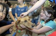 Quail Run School students, including fourth-grader Abby Cohen, right, lean in to pet Cheddar, an Alaskan husky, who competed in this year's Iditarod dog sled race last month in Alaska with his owner, Clint Warnke. Warnke and Cheddar visited the school Wednesday for a presentation on his competition in the race.