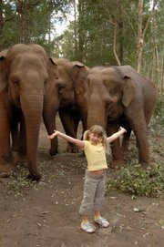"Bindi Irwin, the 8-year-old daughter of the late crocodile hunter Steve Irwin, poses with three elephants on the set of her new show ""Bindi: The Jungle Girl,"" at Australia Zoo in Beerwah, Australia."