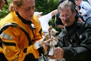 Rescue workers clean oil from a kitten rescued from a home Tuesday after flooding combined with an oil spill affected a large part of Coffeyville.