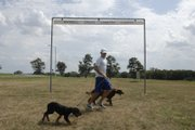 Kansas University's Colby Wissel runs with his dogs, Forest, front, and Molly on the Haskell campus. Wissel is the antithesis of embattled former NFL quarterback/confessed dogfighter Michael Vick.